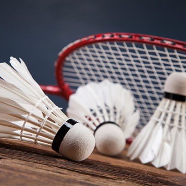 Badminton élite